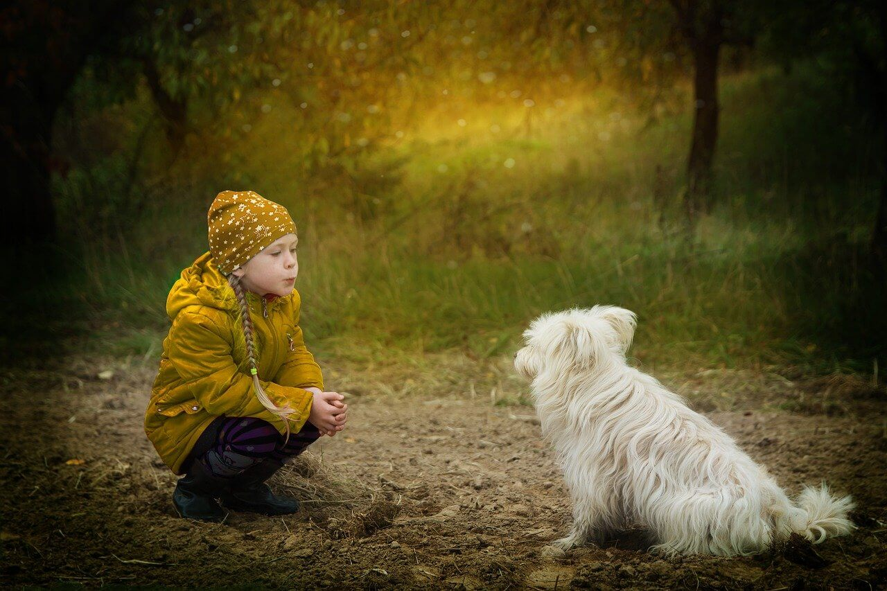 Ultimate List of Kindness Quotes That Will Empower You All ...