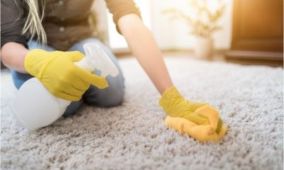 Products-for-Carpet-Cleaning-Services